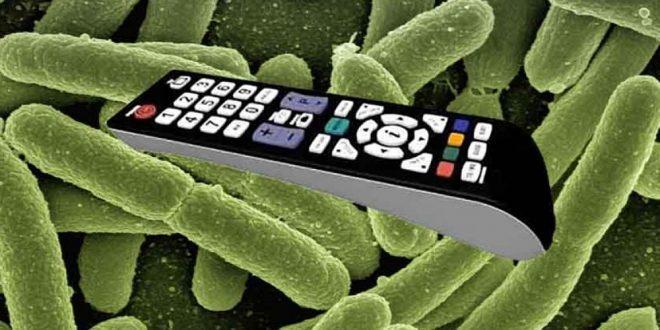 Objetos usados cotidianamente que poseen innumerables bacterias