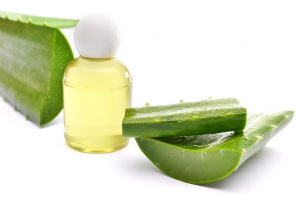 Resultado de imagen para Aceite de oliva y Aloe Vera