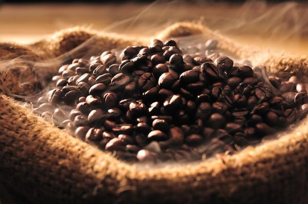 Resultado de imagen para grano de cafe sobre cenizas
