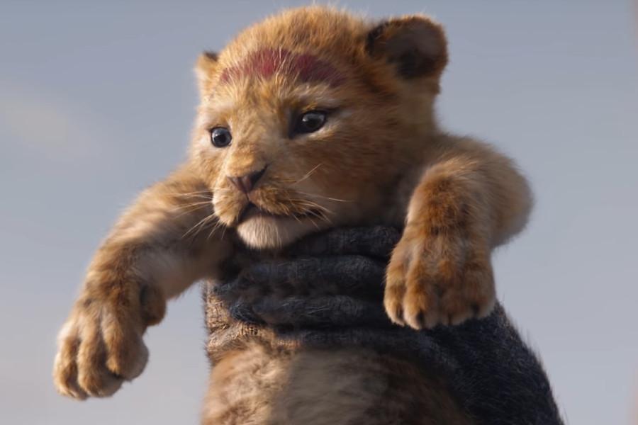 Resultado de imagen para rey leon live action