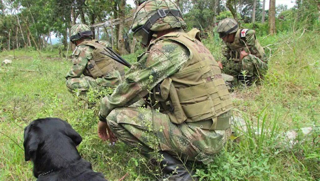 ONU alerta que unas 500 personas se encuentran confinadas en el Cauca por efrentamientos entre disidencia y ejército colombiano