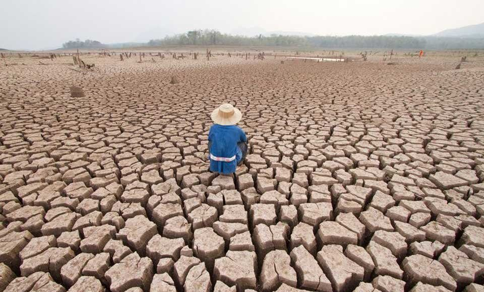 Emergencia climática