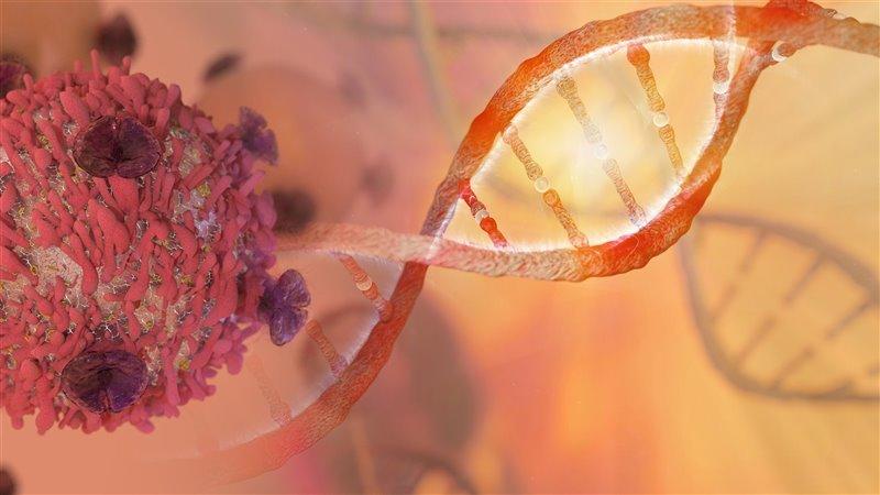 inmunoterapia es la nueva alternativa para el cancer